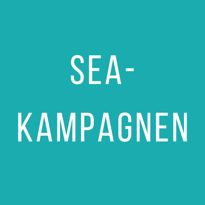 SEA-Kampagnen